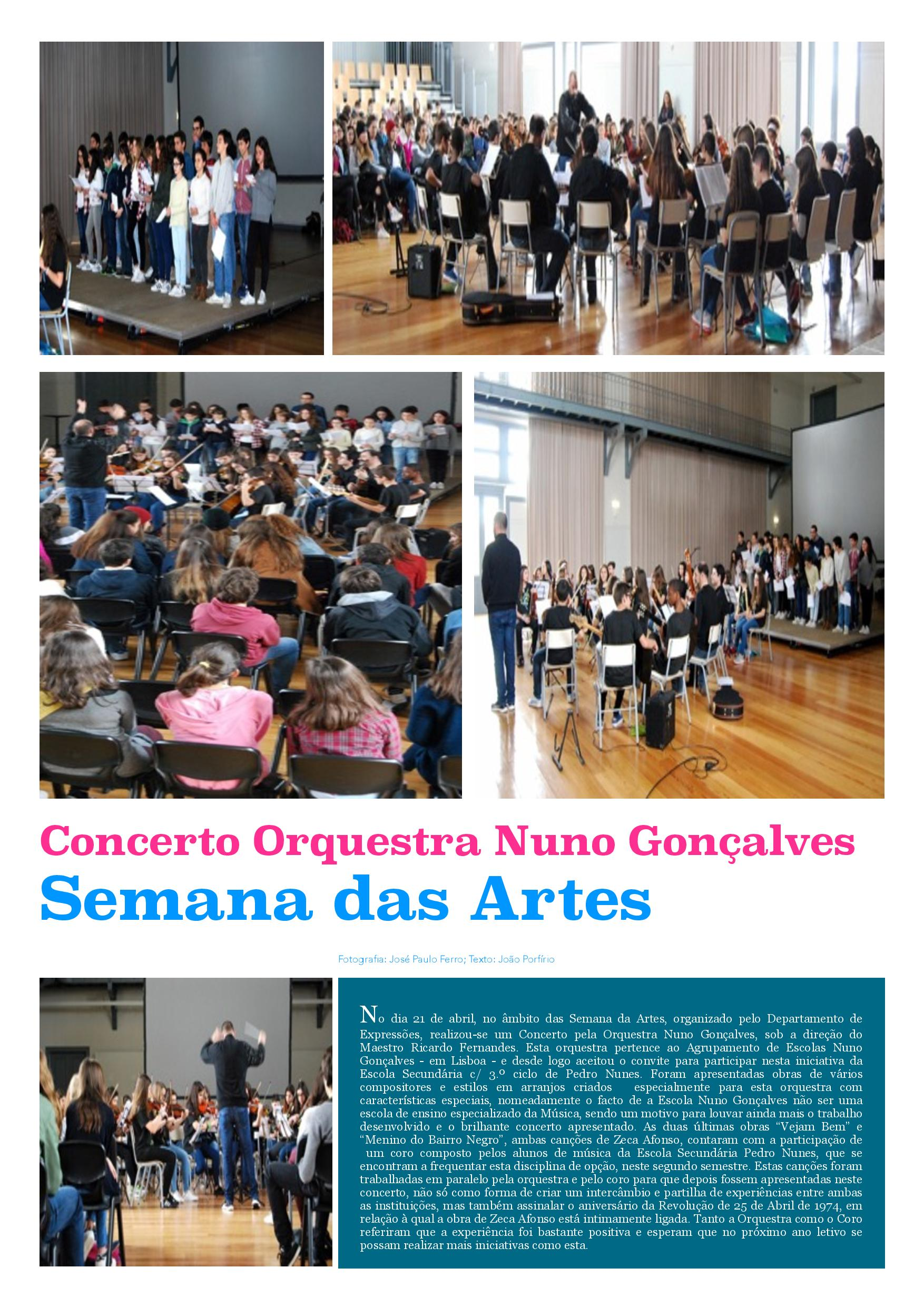 Reportagem Concerto ONG-page-001